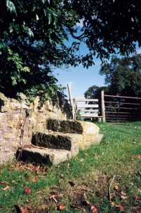 A horse-mounting block in Silton