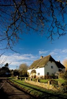 Cottage in Tarrant Monkton