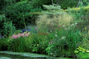 Garden-Broomhill