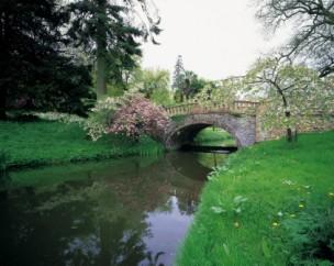 Minterne Gardens bridge crosses the Cerne