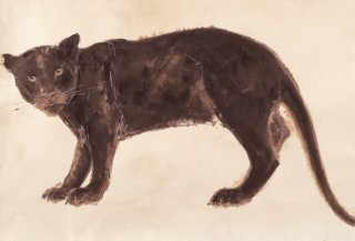 Hurn's painting of the big cat