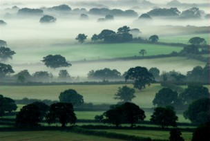Mist in the Marshwood Valel