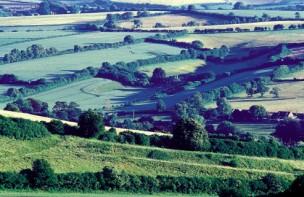 Fields near Maiden Newtonl