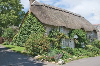 One of several handsome examples of thatch ,Osmington