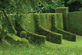 cranborne manor's garden