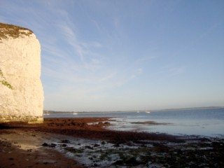 Old Harry
