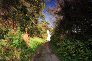 Beaminster Walk