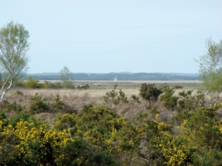 A view across the Arne Peninsula, Arne