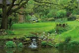 The Glade Garden, Ferndown