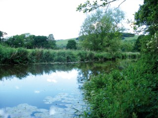 The river at Hod Hill