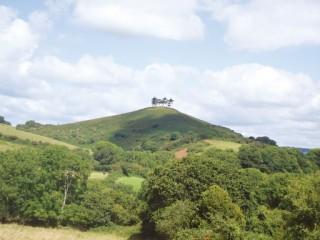 Colmer's Hill, Symondsbury