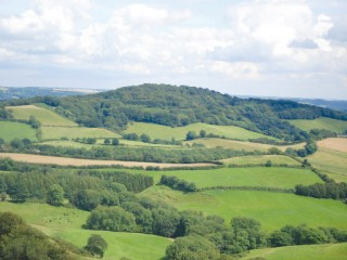 Lewesdon Hill