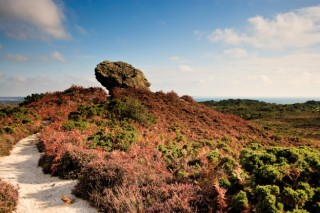 The Agglestone,Purbeck Heath