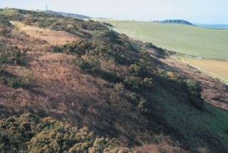 Weymouth walk-the ridgeway
