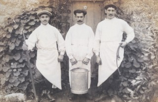 Three male Dorset milkers in 1911