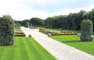 Boscombe Cliff Gardens