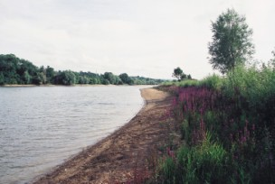 Sutton Bingham Reservoir