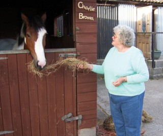 -blandford-stables-Val Cowley