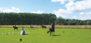 -blandford-stables-A training session at Deer Park Riding Stable