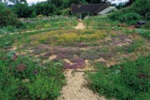 The Round Garden, Buckland Newton