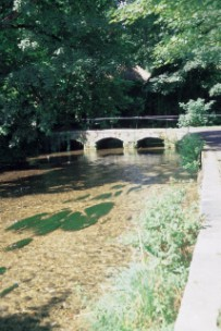 The Mill Stream,The River Frome