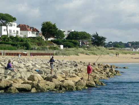 Sandbanks today, showing a combination of rock groynes, steel piling and dune planting