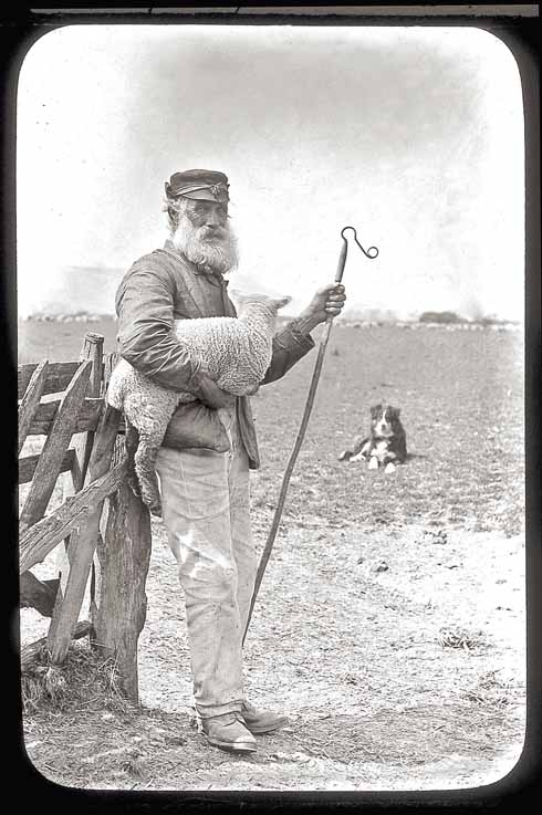 Shepherding was not quite a cradle to grave operation, but employers were keen to employ youngsters with experience, and their fathers glad to have the money coming in