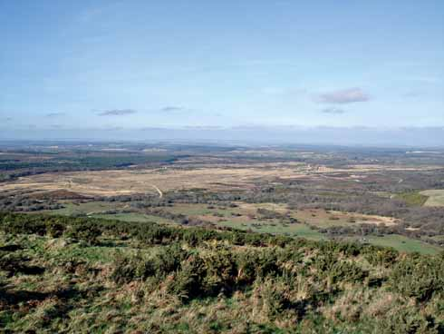 Povington Heath in the Lulworth Ranges from Povington Hill