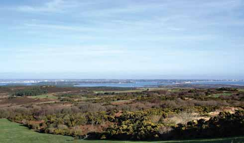 Purbeck's eastern heathland and Poole Harbour
