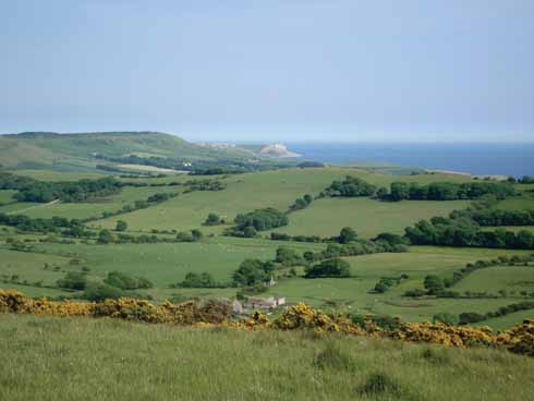 Western Purbeck, Smedmore Hill and distant St Aldhelm's Head