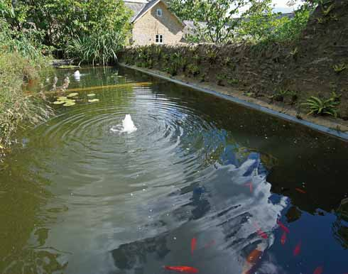 The water feature in the garden may once have been a fish farm