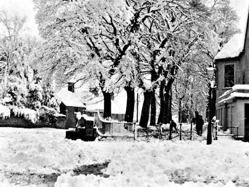 Dorchester in good snow – probably 1881, which was the heaviest fall for fifty years. Looking down The Grove from Top o' Town. Hardy's statue was to be placed in the trees, centre, more than 40 years later.