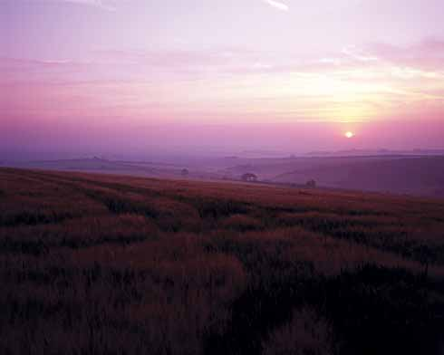 Sunrise over Ridgeway Hill. In Hardy's novel, John and Anne and many others from Overcombe go to the top of the Ridgeway one evening to wait for King George's carriage procession to pass on the way to Weymouth ('Budmouth'). It is a long wait: they do not come until 3.30 am.