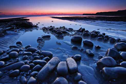 The Purbeck Marine Nature Reserve at Kimmeridge Bay is well worth a visit during the winter months. Get there at low tide to search for the varied marine life that inhabits the rock pools.