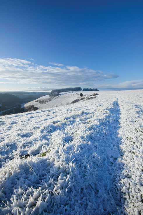 Fontmell Down affords spectacular views across the Blackmore Vale. An extensive network of footpaths provides access to this summit and neighbouring Compton Down and Melbury Hill.