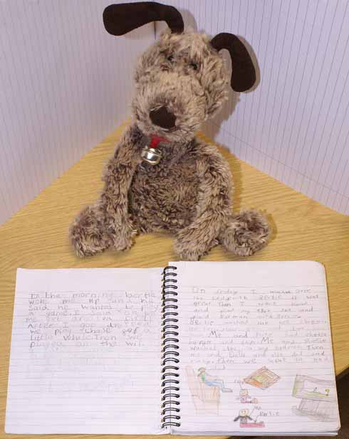 Introducing Bertie: a 'classroom pet' who helps pupils to communicate by recounting his adventures at their homes