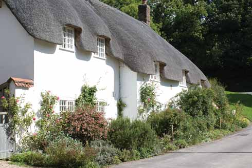 Thatched cottages provide an attractive distraction on the way to the church in Piddletrenthide