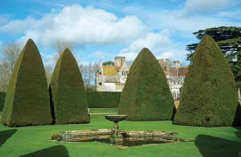 Yew pyramids in the Great Court