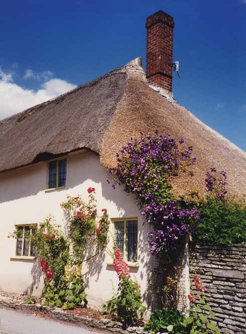 This 18th-century half-hipped thatched cottage was Grade II listed in the mid-eighties