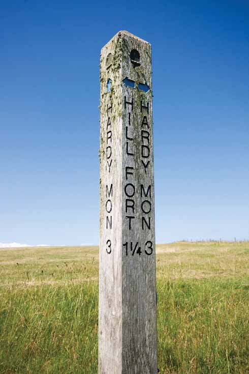 This wind-exposed signpost eschews finger pointers