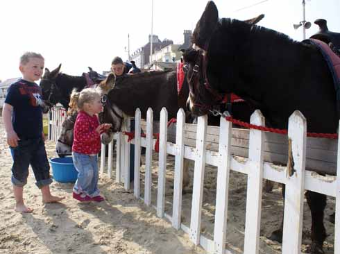 The first children of the day enthusiastically greet Weymouth's donkeys