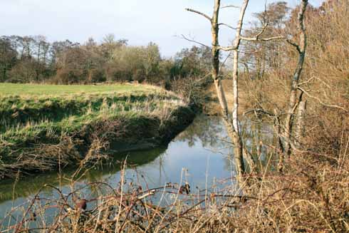 The River Yeo
