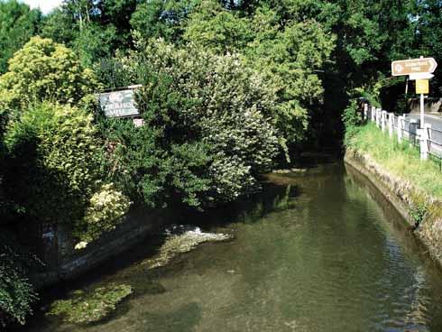 Ashford Water at  Alderholt Mill