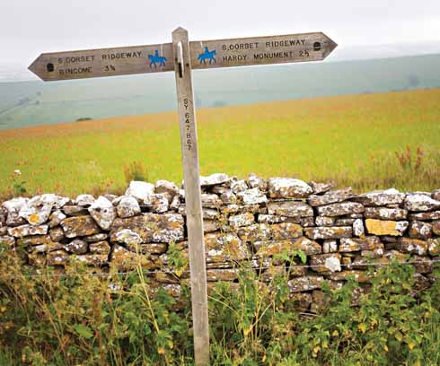 Just before its halfway point, the walk shares a route with the South Dorset Ridgeway for a spell