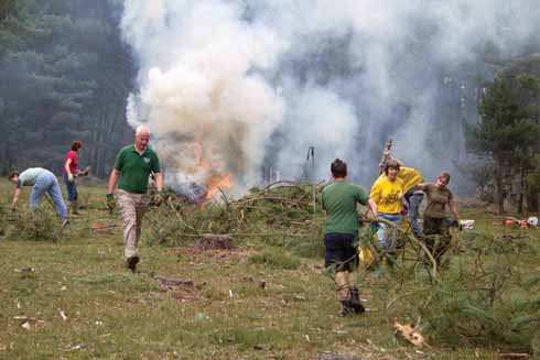 A work party clears unwanted conifers