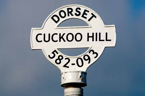 The Cuckoo Hill fingerpost is on a junction south west of Yetminster
