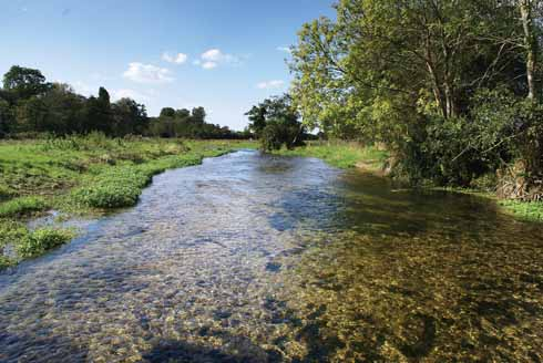 The Frome is crystal clear and, during the summer months may be just a single stream, which can (between the permitted dates) be forded to travel from east of West Stafford (where this shot was taken looking west towards Dorchester) to Lower Norris Hill Farm.