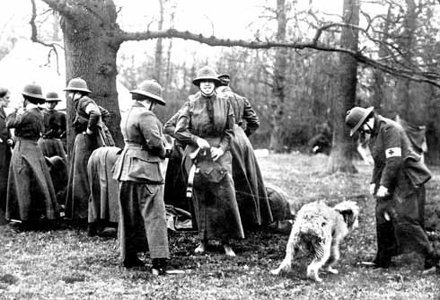 Members of the Women's Sick and Wounded Convoy Corps at their Studland camp, together with shaggy mascot. Some of the women wear an armband indicating their role