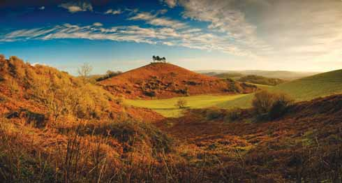 Colmer's Hill shot on Christmas Day 2014 showing its characteristic silhouette and the hillside's autumn/winter coat of russet-coloured bracken