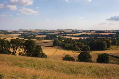 The Cerne Valley really is one of Dorset's treasures